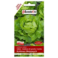 Sałata masłowa wczesna Królowa majowych 1,2g PlantiCO