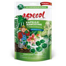 Kapsułki do roślin domowych Ferticaps 18szt Agrecol