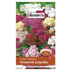 Krwawnik pospolity 0,3g PlantiCO