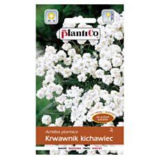 Krwawnik kichawiec 0,3g PlantiCO