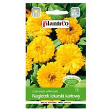 Nagietek lekarski karłowy żółty 2g PlantiCO