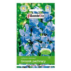 Groszek pachnący jasnoniebieski 2g PlantiCO