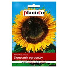 Słonecznik ogrodowy 500g PlantiCo