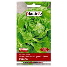 Sałata masłowa wczesna Ismina 1g PlantiCO
