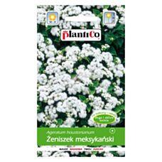 Żeniszek meksykański biały 0,25g PlantiCo
