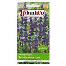 Szałwia omączona 0,2g PlantiCo