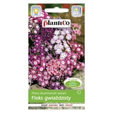 Floks gwiaździsty 0,5g PlantiCo