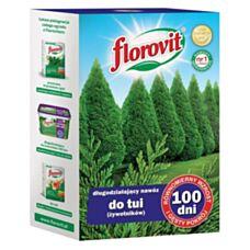 Florovit do Tui (żywotników) 100 dni 1kg Inco