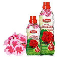 Fructus nawóz do pelargonii i innych kwiatów balkonowych Fosfan
