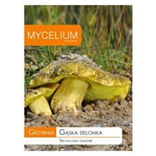 Grzybnia Gąska zielonka 15g Mycelium