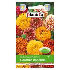 Gailardia nadobna 0,5g PlantiCo
