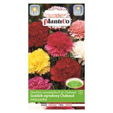 Goździk ogrodowy mix CHABAUD 0,5g PlantiCo