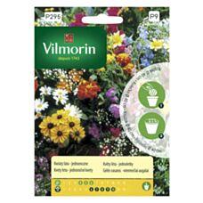 Kwiaty lata - jednoroczne na krążku Vilmorin