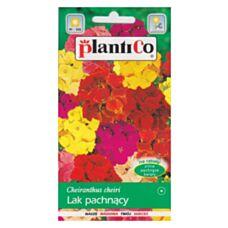 Lak pospolity letni mix 1g PlantiCo