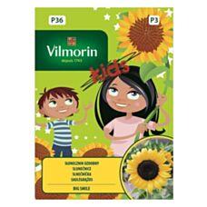 Kids Słonecznik ozdobny niski Big Smile 0,3g Vilmorin