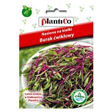 Nasiona na kiełki Burak ćwikłowy 20g PlantiCo