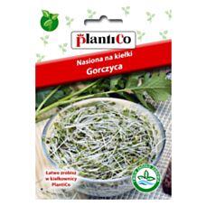 Nasiona na kiełki Gorczyca 20g PlantiCo