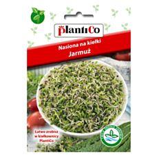 Nasiona na kiełki Jarmuż 5g PlantiCo
