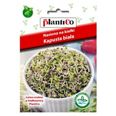 Nasiona na kiełki Kapusta Biała 10g PlantiCo