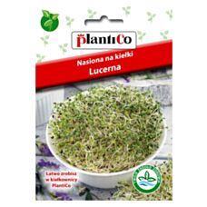 Nasiona na kiełki Lucerna 20g PlantiCo