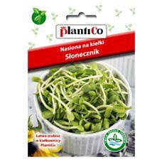 Nasiona na kiełki Słonecznik 40g PlantiCo