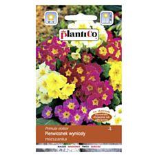 Pierwiosnek wyniosły mix 0,2g PlantiCo