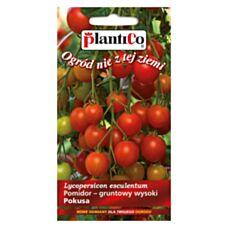 Pomidor gruntowy wysoki POKUSA 0,5g PlantiCo