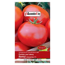 Pomidor pod osłony REMIZ mieszaniec F1 0,1g PlantiCo