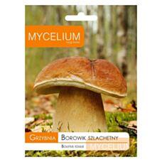 Grzybnia Borowik szlachetny 10g Mycelium