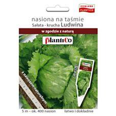 Sałata krucha nasiona na taśmie z nawozem 5m PlantiCo