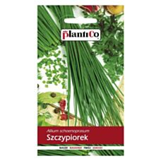 Szczypiorek ogrodowy 1g PlantiCo