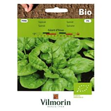 Szpinak Geant D'Hiver Bio 10g Vilmorin