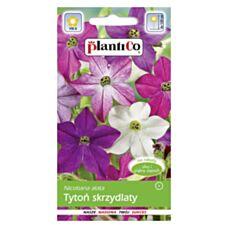 Tytoń ozdobny MIX 0,3g PlantiCo