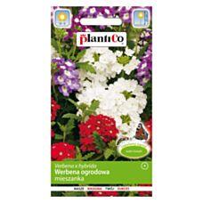 Werbena ogrodowa MIX 0,5g PlantiCo