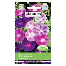 Wilec purpurowy mix 3g PlantiCo