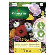 Wyspa kwiatów - kwiaty jednoroczne na krążku Vilmorin