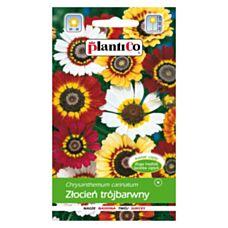 Złocień trójbarwny 2g PlantiCo