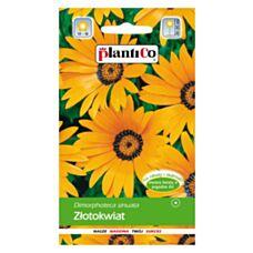 Złotokwiat 0,5g PlantiCo