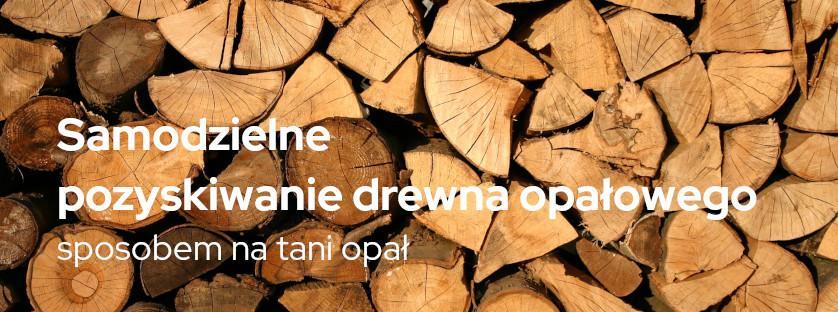 Samodzielne pozyskiwanie drewna opałowego sposobem na tani opał