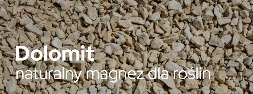 Dolomit – naturalny magnez dla roślin