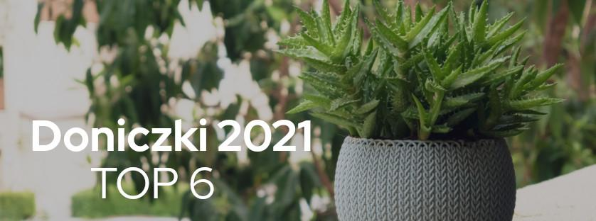 Doniczki 2021 - TOP 6