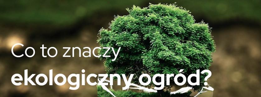 Co to znaczy ekologiczny ogród?