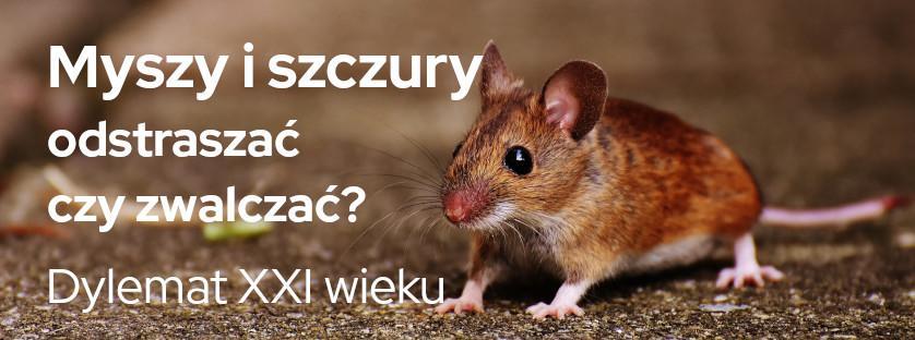 Myszy i szczury  - odstraszać czy zwalczać? Dylemat XXI wieku