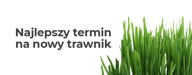 Najlepszy termin na nowy trawnik