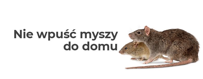 Nie wpuść myszy do domu