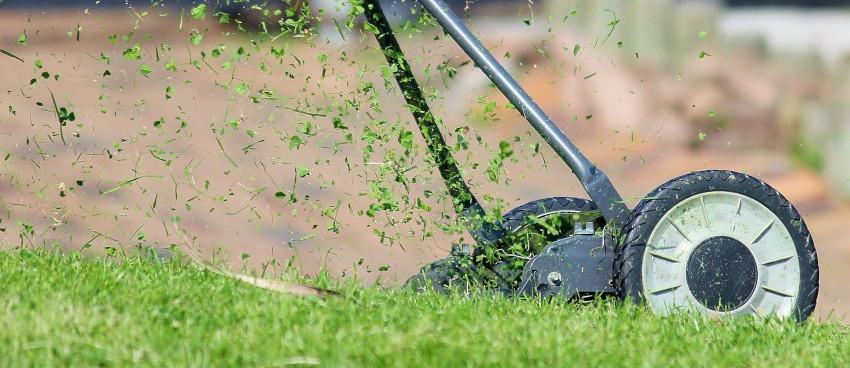 Kosiarki na dobre koszenie trawnika