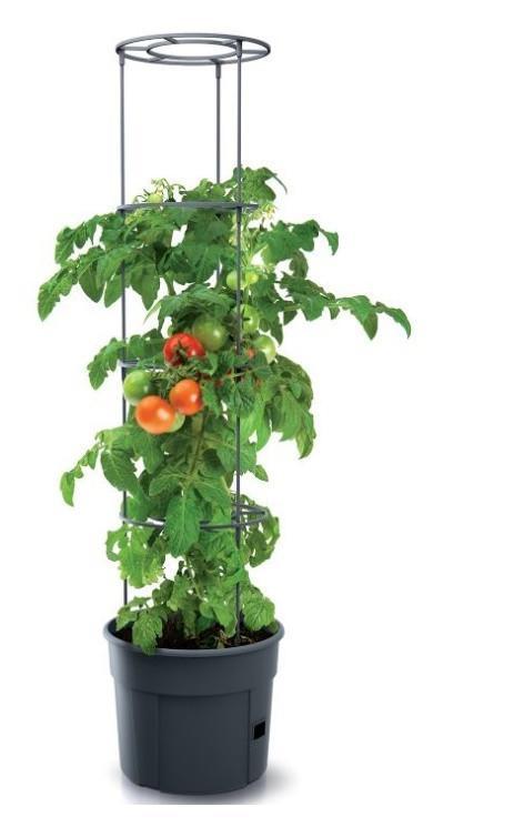 Tomato Grower - doniczka do uprawy pomidorów Prosperplast - grafika producenta