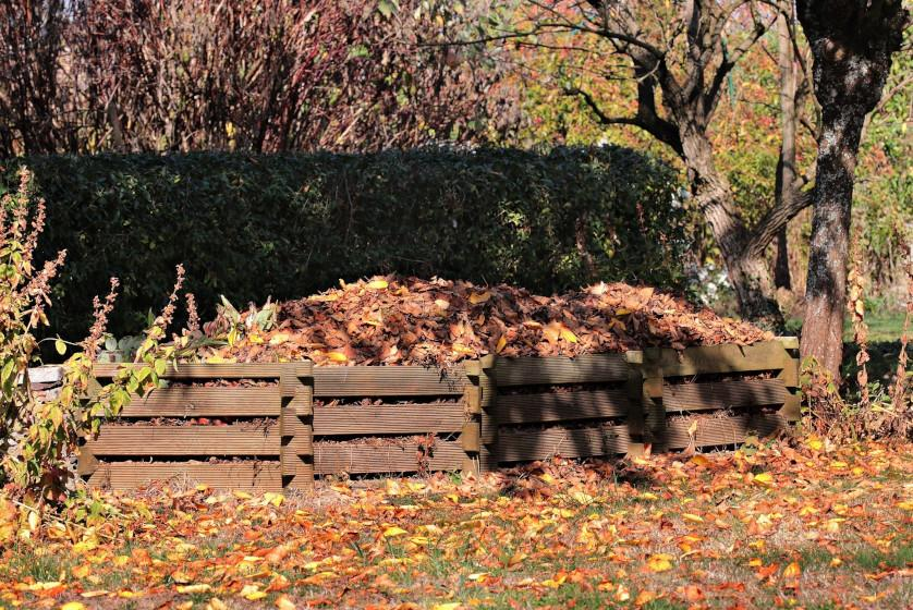 Kompostowanie liści