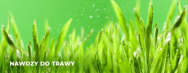 Nawozy do trawy